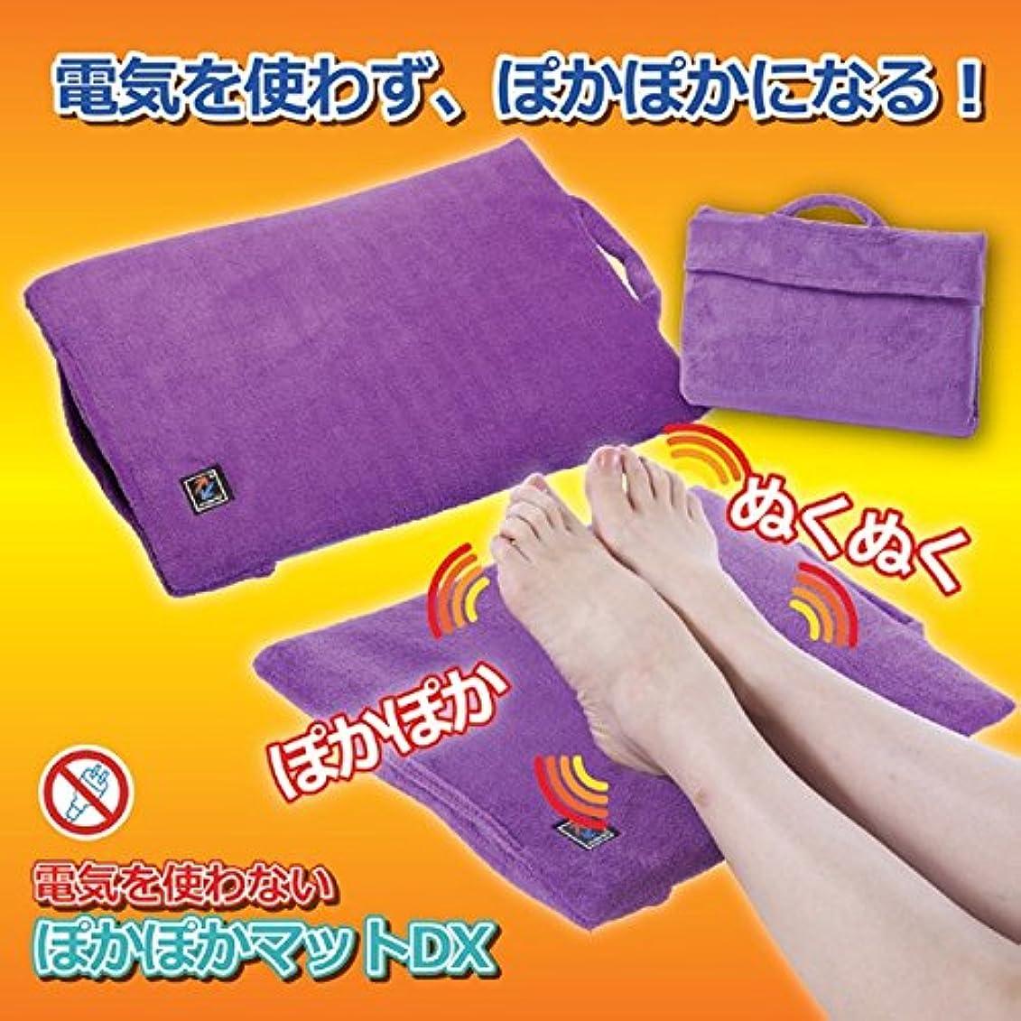 親高潔なイサカぽかぽかマットデラックス 富士山溶岩シート使用 30cm×40cm 洗える (防寒用具) ds-1283516