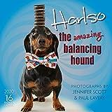 Harlso the Amazing Balancing Hound 2020 Calendar