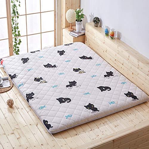 yangdan Alfombrilla para dormir Tatami para cama de protección para el suelo, alfombrilla para dormitorio de estudiante (color: D, tamaño: 0,9 x 2 m)