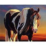 Xofjje Pintar por Numeros Adultos_Caballo Retrato Animal_DIY Pintura por números con_Pinceles y Pinturas Decoraciones para el Hogar_30x35cm_Sin Marco