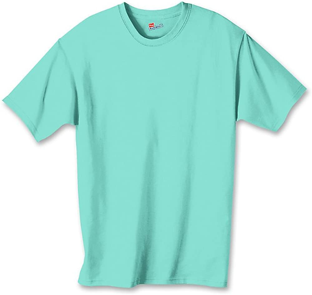 Hanes by Authentic Tagless Boys' Cotton T-Shirt_Clean Mint_M