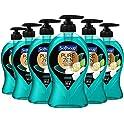 6-Pack Softsoap Pure Zen Hand Soap Pump, 11.25 Ounce