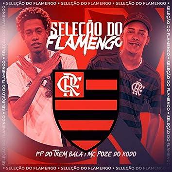Seleção do Flamengo