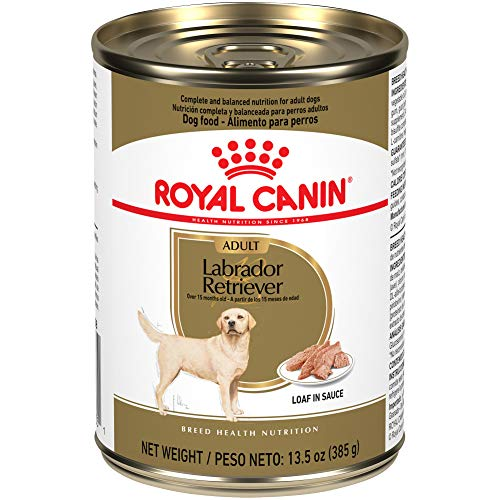 Royal Canin Breed Health Nutrition Labrador Retriever Adult Loaf in Sauce Canned Dog Food, 13.5 oz Can (Case of 12)