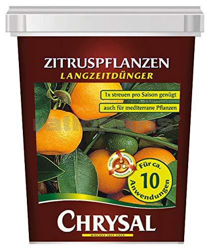 Chrysal zitruspflanzen langzeitd. 300g