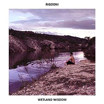Wetland Wisdom