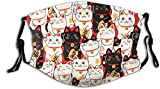 Lucky Cat Cloth Face Mask With Filter Pocket Washable Face Bandanas Balaclava Pollen-Proof Print Reusable Fabric Mask With 2 Pcs Filters