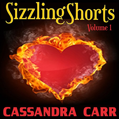 Sizzling Shorts audiobook cover art