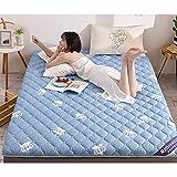 Alfombra de Tatami Japonesa,Plegable Colchón Suelo, Grueso Acolchado Suave Antiescaras Colchón futon Dormir Mat para Dormitorio Alcoba,F,1.35 * 2.0m