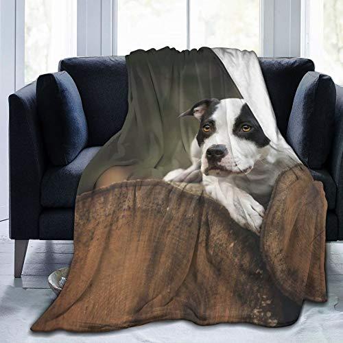 Perfect household goods Fleecedecke, 127 x 152,4 cm, Hunde-Baum, Holzscheite, Lies Look, Naturstämme, Flanell-Fleece, weich, warm, Plüsch-Überwurf, Decke für Bett/Couch/Sofa/Büro/Camping