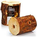 com-four® 2X Fuego Sueco con Mecha de Encendido y Aroma de citronela, antorcha finlandesa para Romance de fogata, antorcha de árbol, antorcha de jardín con Aroma