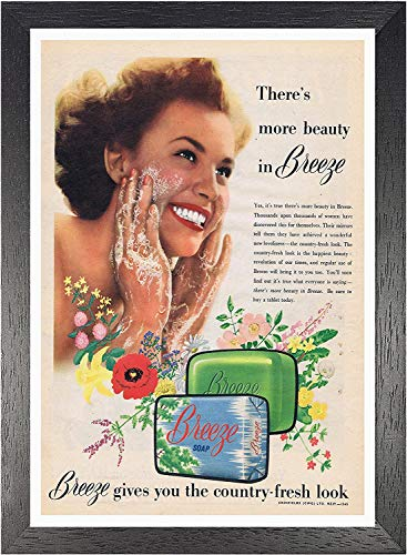 Breeze Zeep Poster Geeft U Het Land Fresh Look Foto Vintage Oude Advert Artwork Klassiek Ouderwetse Commerciële