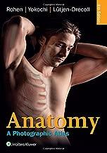 rohen anatomy