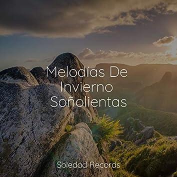 Melodías De Invierno Soñolientas