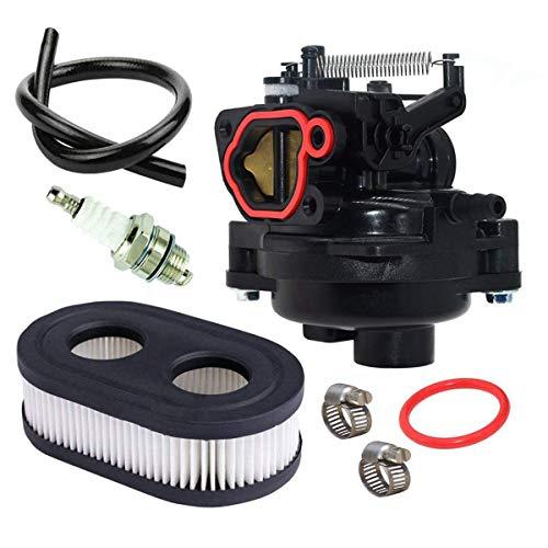 Hippotech Carburateur pour Briggs & Stratton 09P702-0145-F1 09P702-0098-F1 550EX 625EX 675EX 725EXI 140CC Moteurs Remplace 799584 Glucides