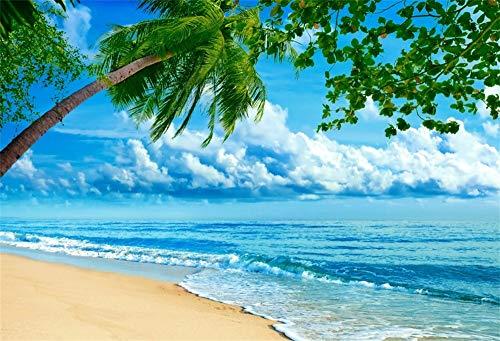 Cassisy 2,2x1,5m Vinilo Mar Telon de Fondo Playa de Arena Tropical Playa Espuma Palmeras Cielo Azul Fondos para Fotografia Party Infantil Photo Studio Props Photo Booth