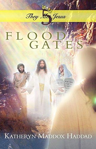 Flood Gates (They Met Jesus Book 5) (English Edition)