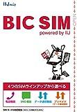 BIC SIM 全プラン 全SIMサイズ対応パッケージ(Wi2 300無料特典付き) ホワイト IM-B196
