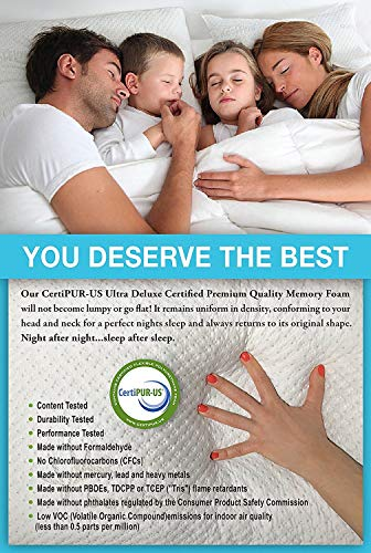 Xtreme Comforts Hypoallergenic, Adjustable Thickness, Kool-Flow Micro Vented Bamboo Shredded Memory Foam Bed Pillow for Sleeping, Back, Stomach & Side Sleepers, Queen Size, Made in USA