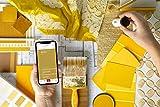 Datacolor ColorReader – Herramienta para coincidencia de color – Identifica...