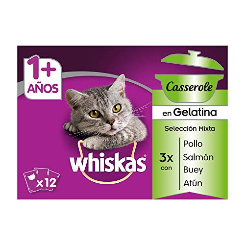 Whiskas Casserole Multipack Bolsitas de Comida Húmeda para Gatos Adultos Selección Mixta (4 cajas x 12 sobres x 85g) [Empaque puede variar]