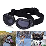 pet chemist Dog Goggles for Bike Riding, Cool Dog Sunglasses Sun Wind Protection, Pets Eye Accessories for Small and Medium Dog 4.72x1.37inch