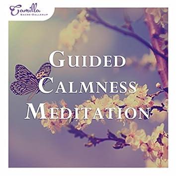 Guided Calmness Meditation