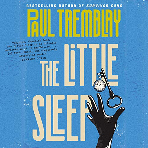Couverture de The Little Sleep