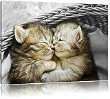 Zwei süße Babykatzen im Korb schwarz/weiß Format: 80x60