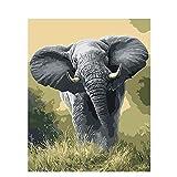 Zhxx Pintar Por Numeros Rotulador Elefantes En La Hierba Lienzo Animal Decoración De La Boda Imagen Artística Regalo 40X50Cm Sin Marco