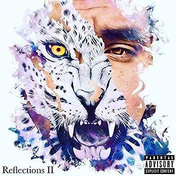 Reflections II: The Wrath