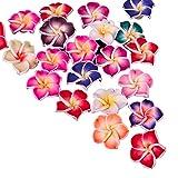 WEIMEIDA JQBB430 - Lote de 10 piezas para joyería de bricolaje con arcilla polimérica, cuentas sueltas de colores mezclados y rosas de huevo, accesorio colgante SGNTZ (color: 20 x 9 mm)