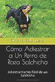 Cómo Adiestrar a Un Perro de Raza Salchicha: Adiestramiento Fácil de un Salchicha