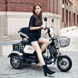 Viejo scooter de tres ruedas / adulto discapacitado casual motocicleta eléctrica de tres ruedas scooter de servicio pesado batería de litio de alta potencia 60v20a / 48v20a / 800W motor,White,60v20a