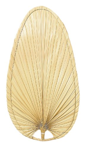 Fanimation ISP4 Narrow Oval Blade, 22-Inch, Palm, Set of 5