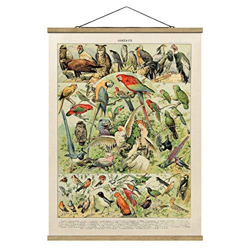 Stoffbild Posterleisten Vintage Lehrtafel Vögel Hochformat 4:3 66.4x50cm Eiche