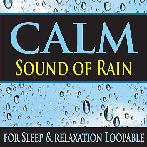 Metal Carport Loopable Rain Sounds