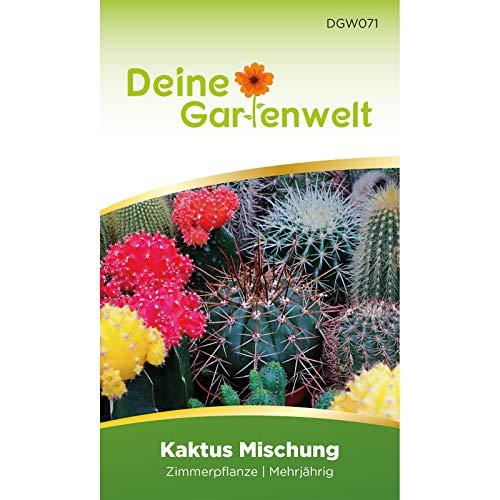 Kaktus-Mischung | Samen für Kakteen | Zimmerpflanzen Saatgut