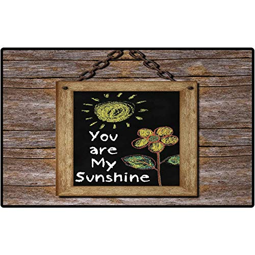 Quote Indoor/Outdoor Area Rug Love Valentines Phrase with Flower and Hand Drawn Sun Figure on Framed Wooden Wall Printing Mats for Entry, Garage, Patio, High Traffic Areas 48x30 Multicolor