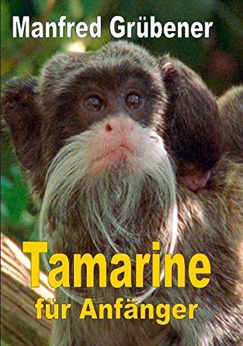 Tamarine: für Anfänger
