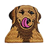 WIRESTER 2 x 2 inch Vintage Embroidered Sew on Iron on Patch for Shirts, Jeans, Jackets, Hats - Cute Winking Golden Retriever Dog