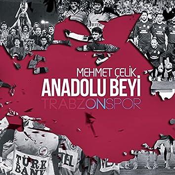 Anadolu Beyi Trabzonspor