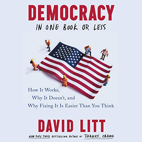 Democracy in One Book or Less audiobook cover art