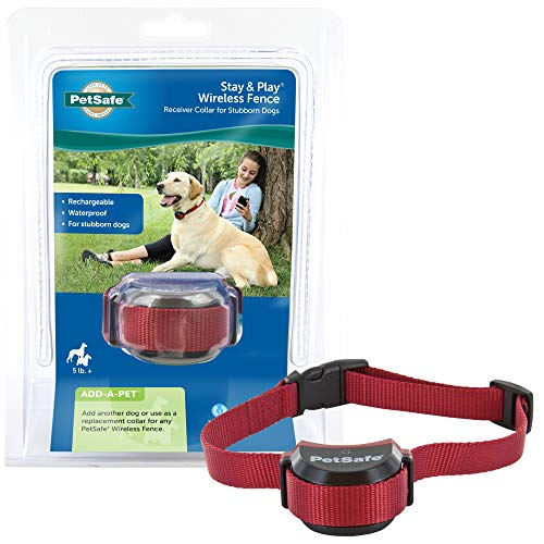 PetSafe Stubborn Dog Stay & Play Wireless Fence Receiver Collar, Waterproof and Rechargeable, Tone and Static Correction, PIF00-13672, from the Parent Company of the INVISIBLE FENCE Brand