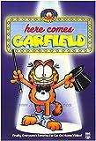 Garfield Movie Poster  68 58 x 101 60 cm