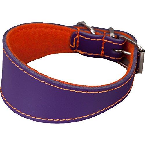 Arppe 195466045153 Collar Galgo o Cuero Fieltro Orinoco, Naranja y Morado ✅