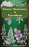 Plantas medicinales y curativas: El poder de las hierbas medicinales (Fitoterapia)