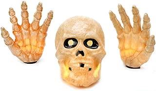 Best skeleton head transparent Reviews