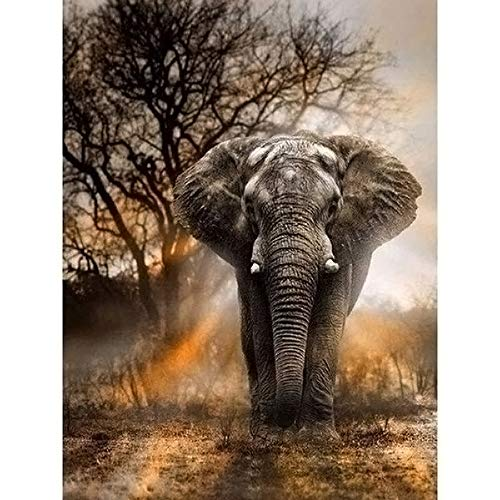 Bealatt 5D DIY Diamond Painting by Number Kits, Painting Cross Stitch Full Drill Elephant Animal Rhinestone Embroidery Pictures Arts Crafts for Home Wall Decor, Diamond Puzzles for Adults, 12x16 Inch