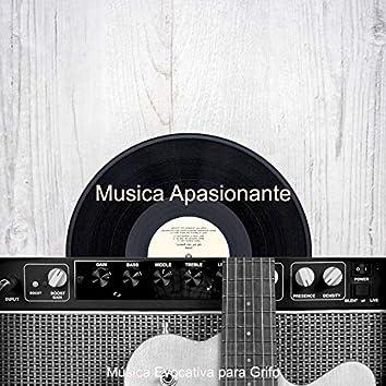 Musica Apasionante